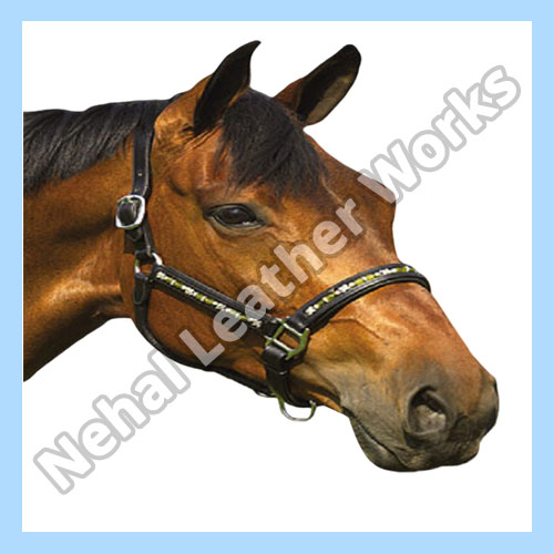 Horse Halters Suppliers