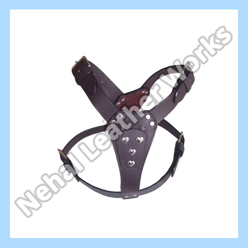 Dog Harness In Napier and Hastings