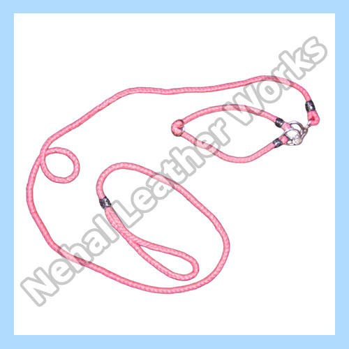 Dog Leash In United Kingdom