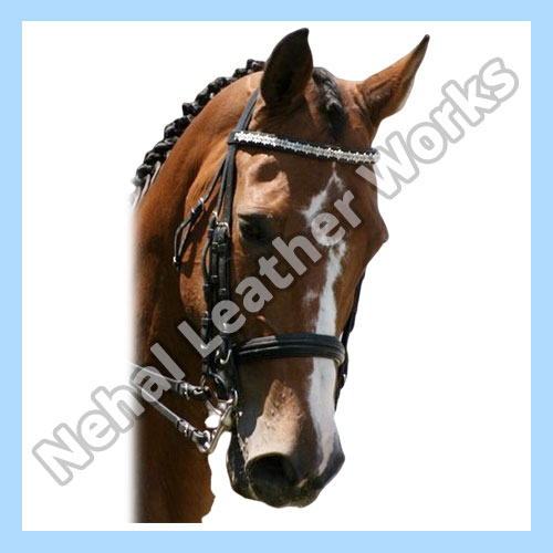 Horse Browbands In Portugal