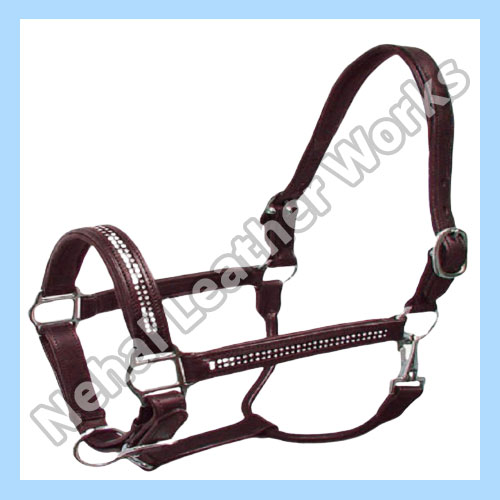Horse Halters  In Sweden