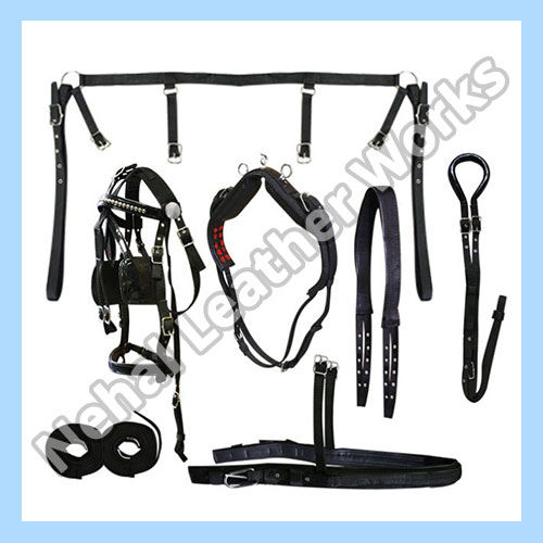 Horse Harness Set In Sweden