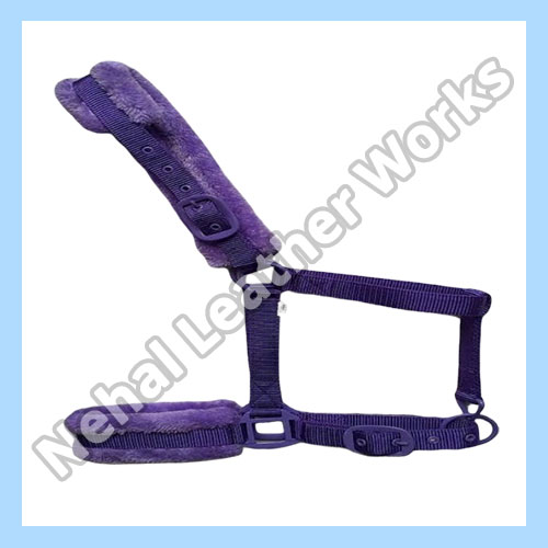 Nylon Halters In New Zealand