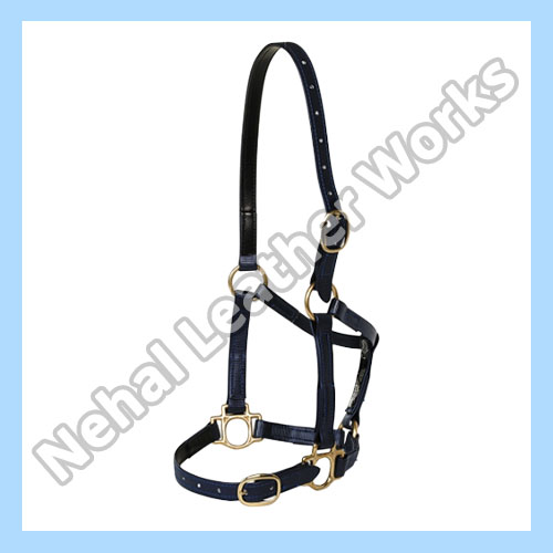 PVC Halters In United Kingdom